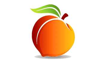 Peachtree Accounting Training course