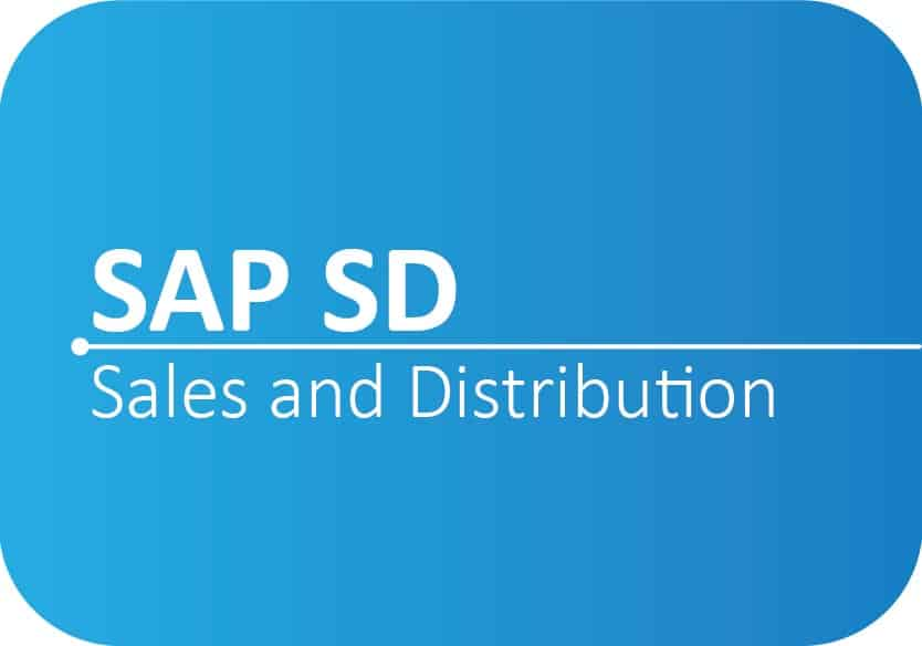 Professional SAP SD Certification Training in Ballari Karnataka|SMEClabs